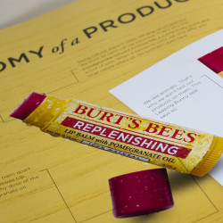 Burt's Bees Product Catalog